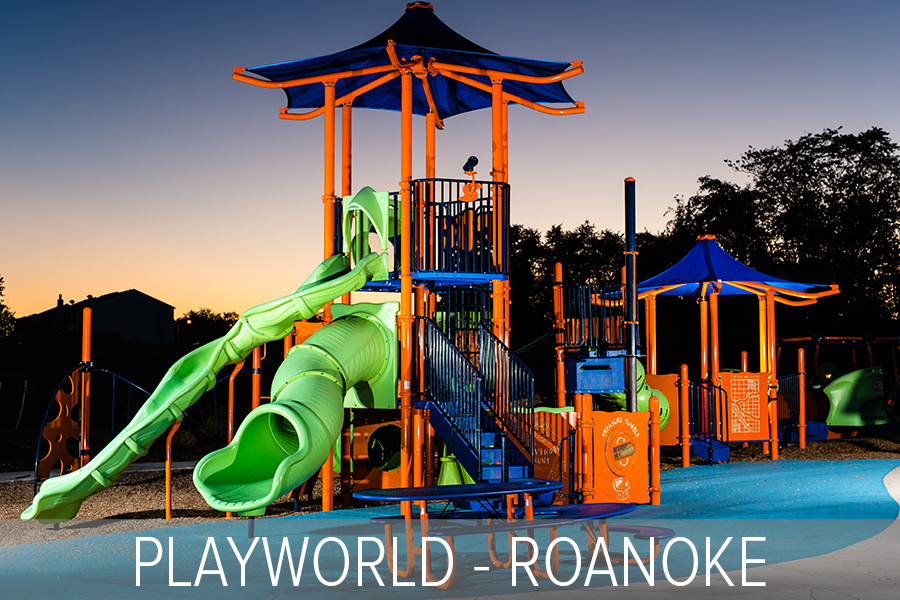 PLAYWORLD ROANOKE Badges Landscape.jpg