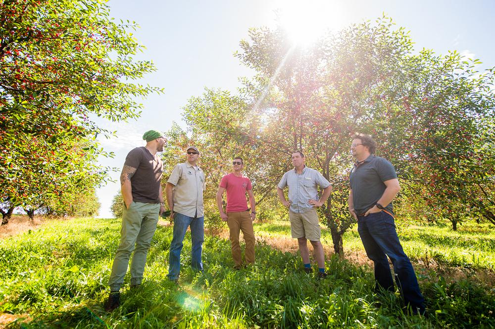Troegs Cherries Picking 06-17-2015-18 copy.jpg