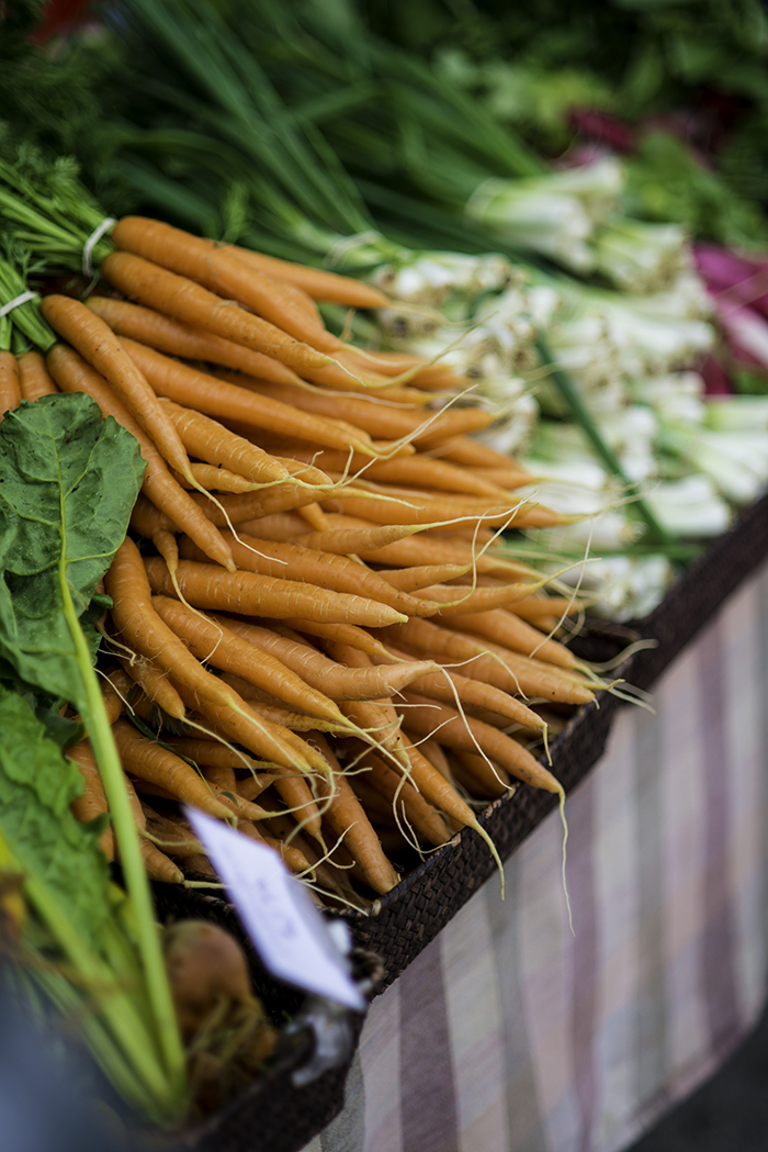 Salvaterra's carrots, Easton Farmers' Market. Photo by Adam Atkinson