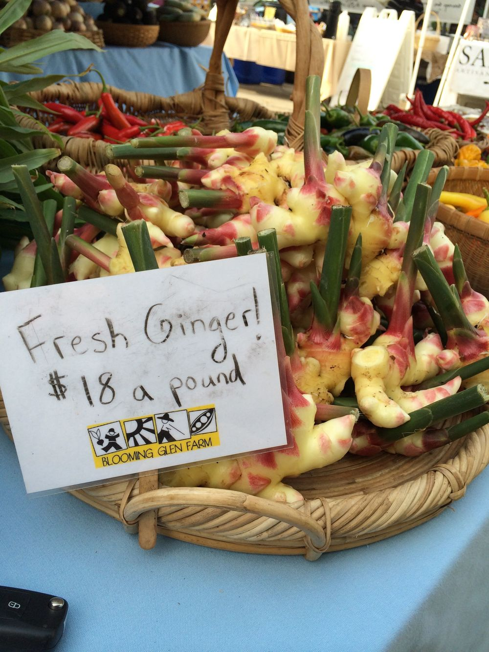Fresh ginger root, Blooming Glen, at Easton Farmers' Market