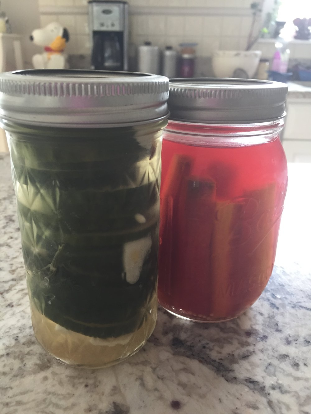 Cucumbers with garlic, dill and mustard seed; carrots with thyme and ginger. The brine turned pinkish red thanks to the interaction of purple carrots with the vinegar.