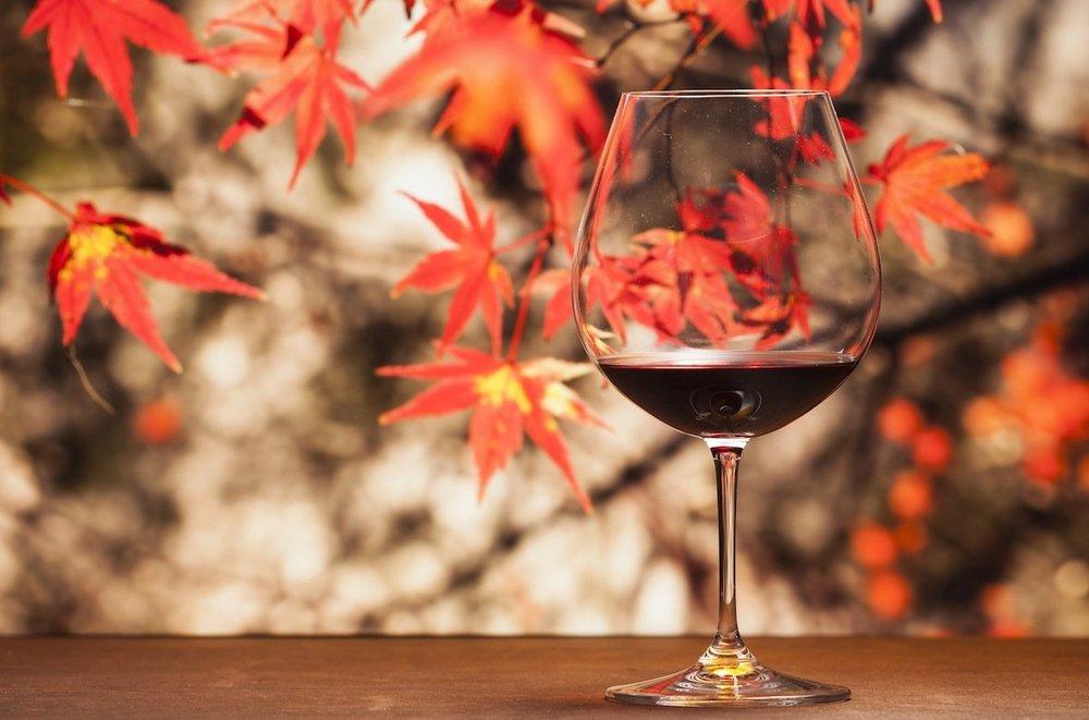Fall Wines.jpeg