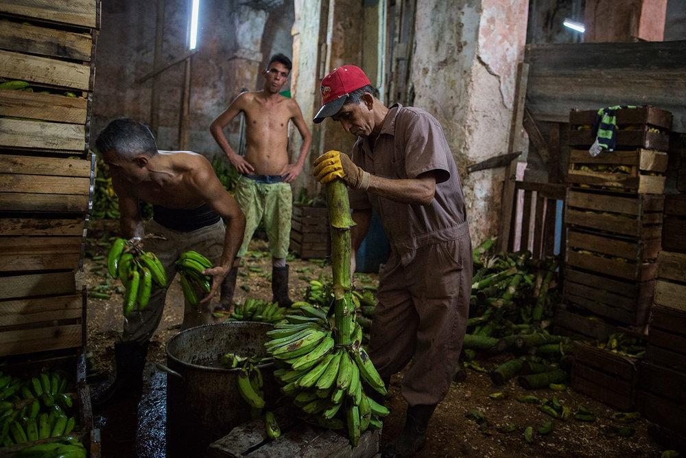 Havana in color 19.jpg
