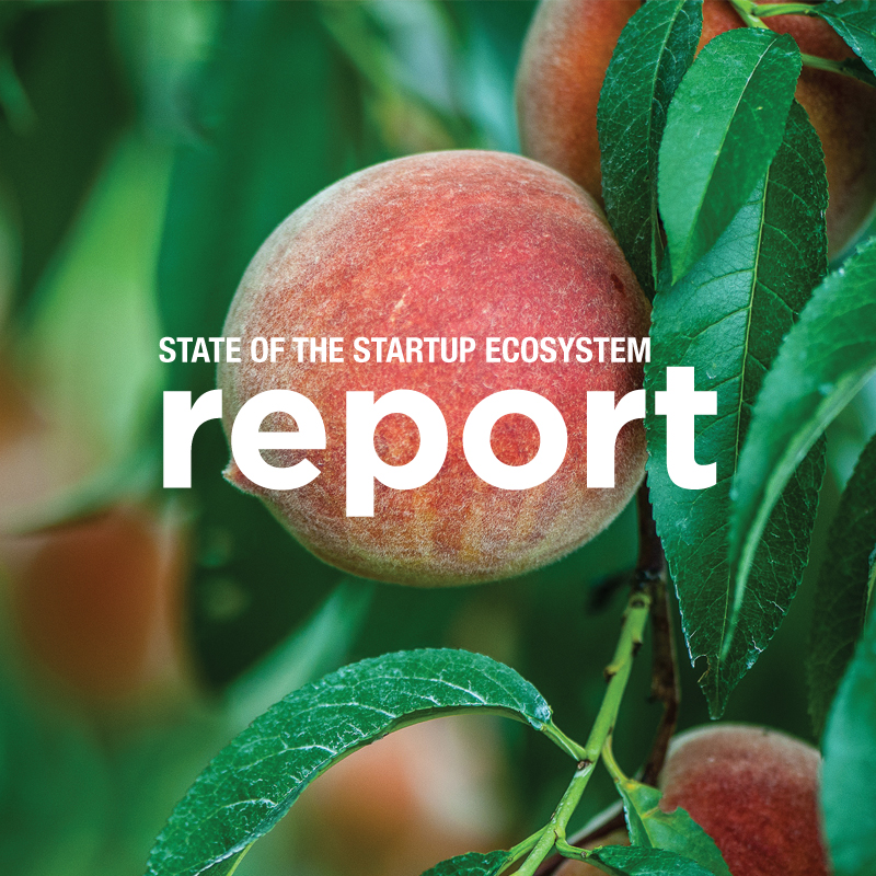 report-web.jpg