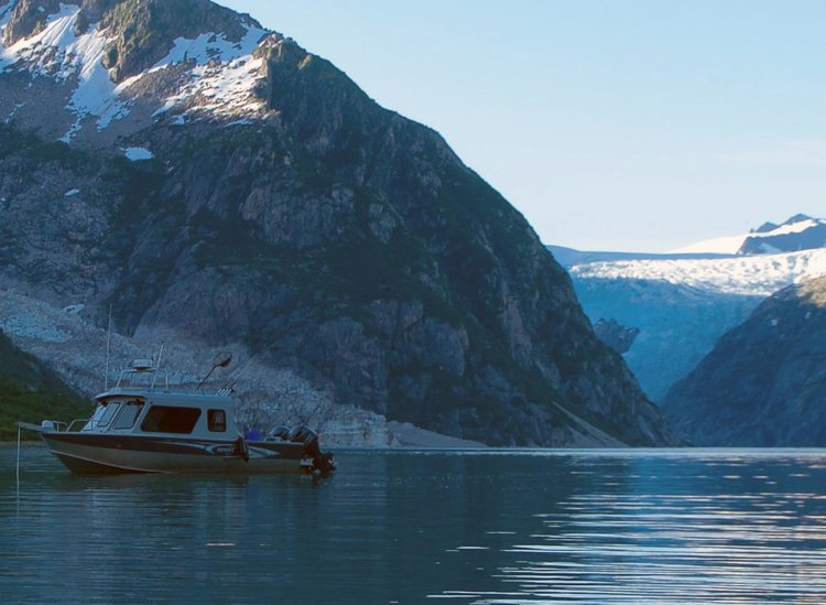 seward ocean excursions alaska