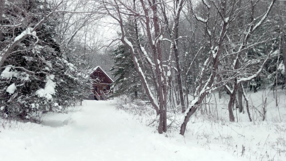 log cabin snow.jpg