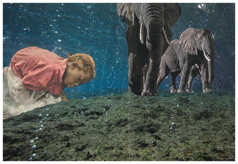 collage elefantes 29x20.jpg