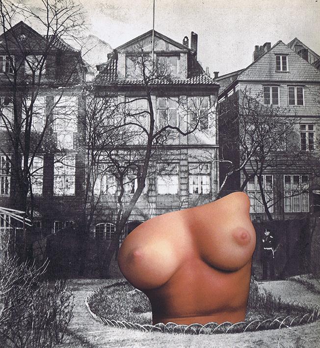 Serie nudes 36 23x25 cm art_ripoff_davidgorriz 72.jpg