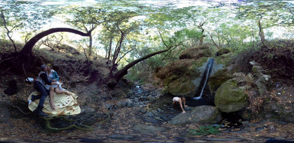 Image from NATURE a 360 immersive experience, Coming soon...