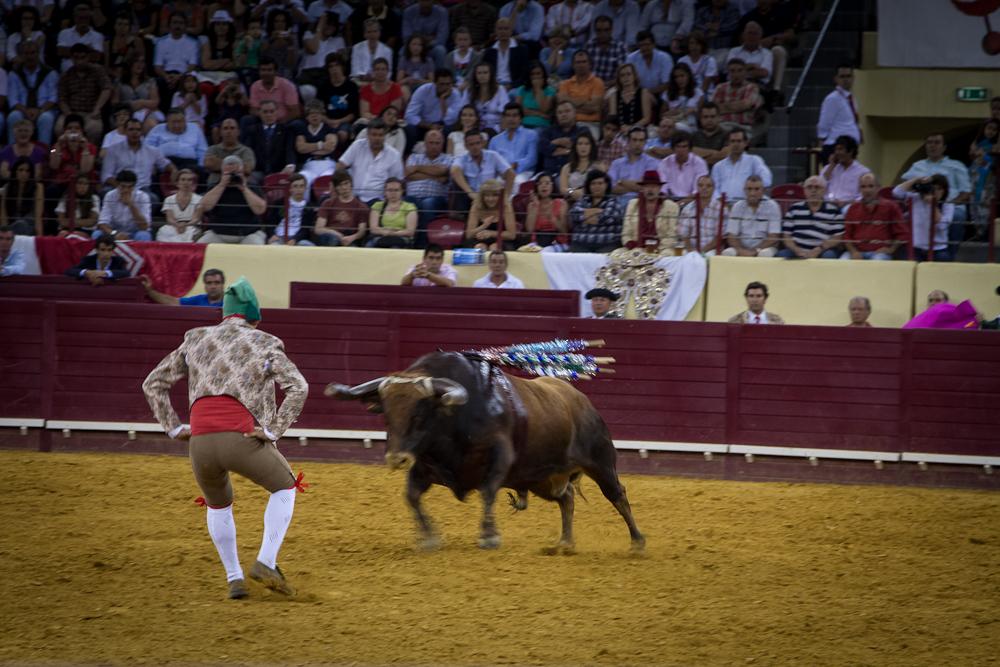 Campo_Pequeno_0251_2012_07.jpg
