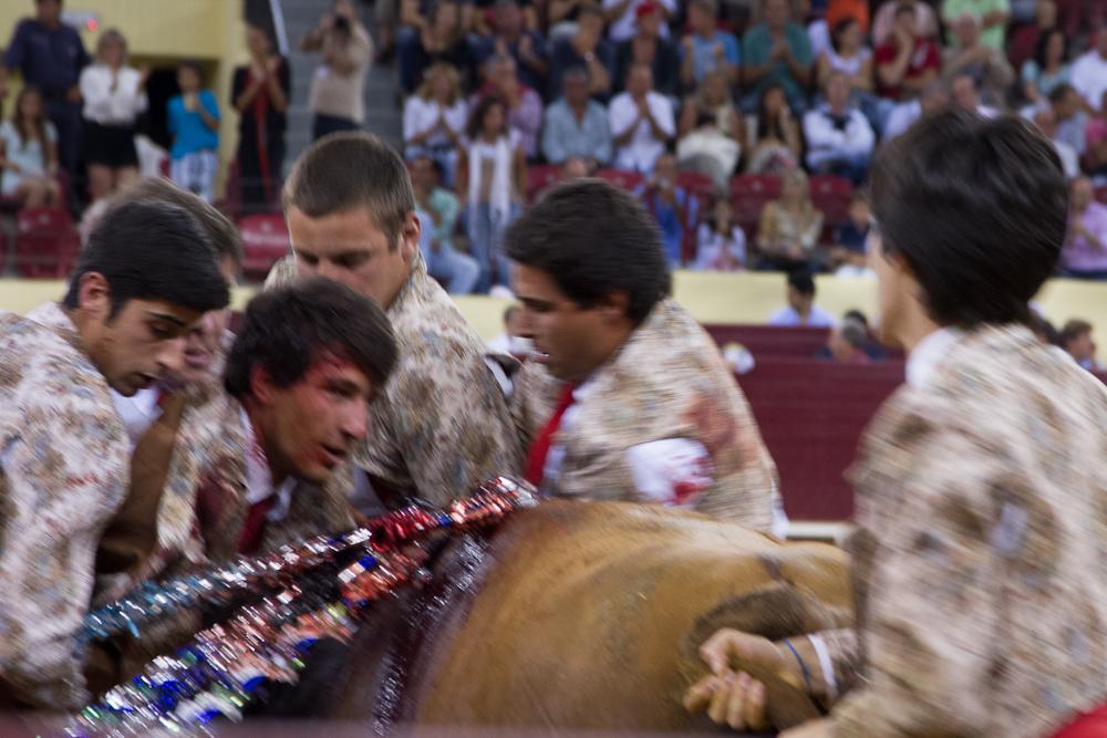 Campo_Pequeno_0254_2012_07.jpg
