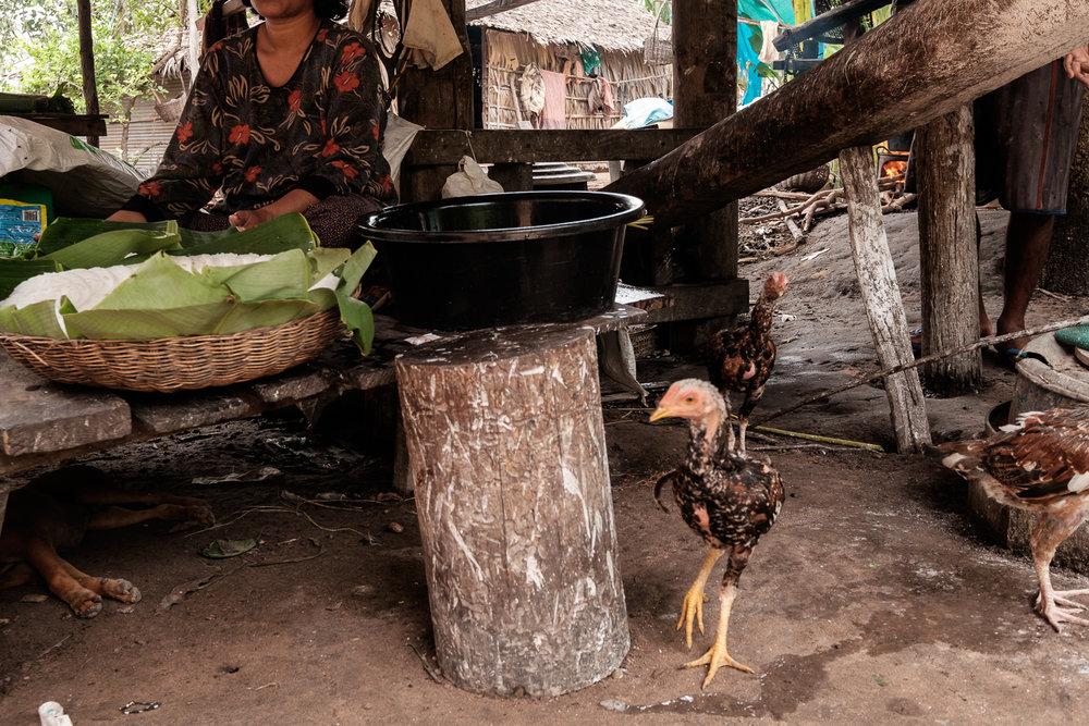 Camboja_1863_2015_08.jpg