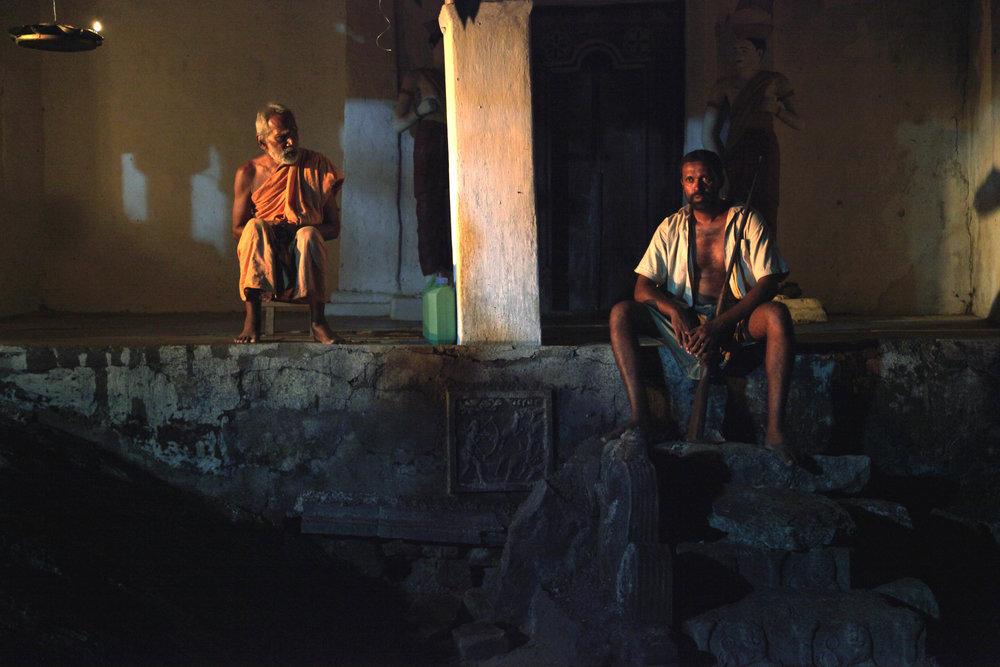 Леопард не кусает - Шри-Ланка
