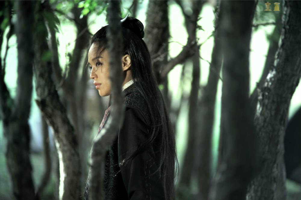Taiwan  - The Assassin -  Hou Hsiao-Hsien    Official Oscars Submission for Foreign Language Film Award     Official Golden Globe Submission for Best Foreign Language Film Award    http://www.asianworldfilmfest.org/assassin