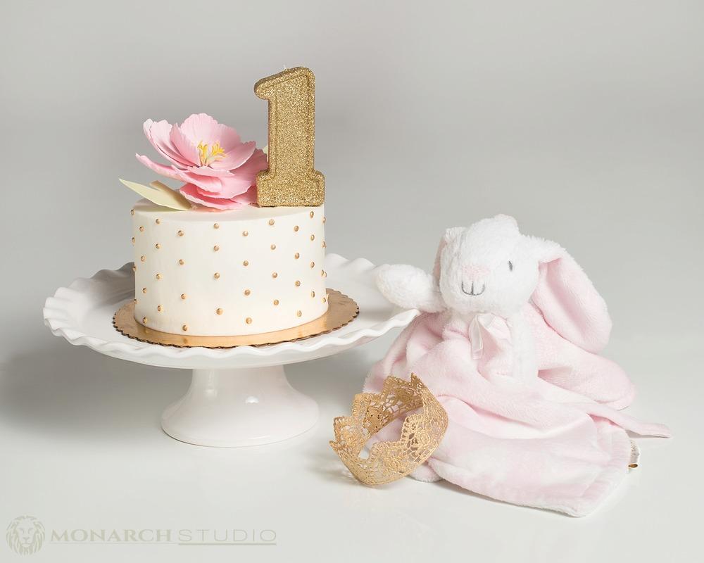 First Birthday Smash Cake Photography Monarch Studio St