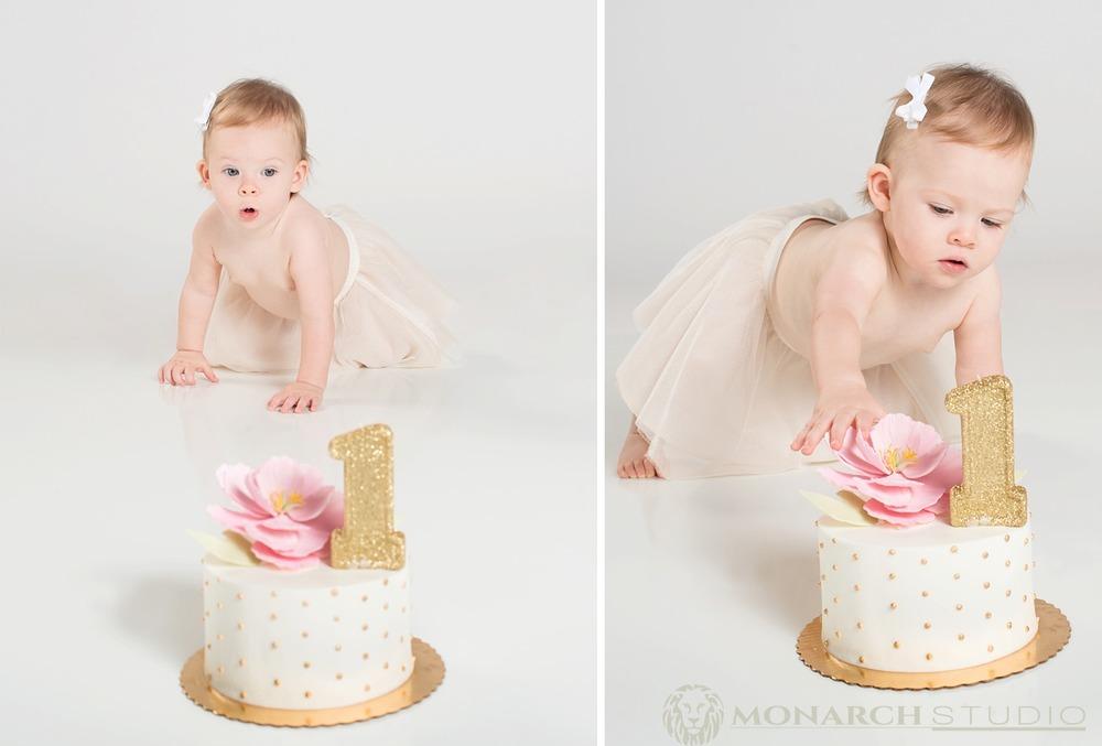 First-Birthday-Smash-Cake-Photography-Monarch-Studio-St-Augustine-Florida_0023.jpg