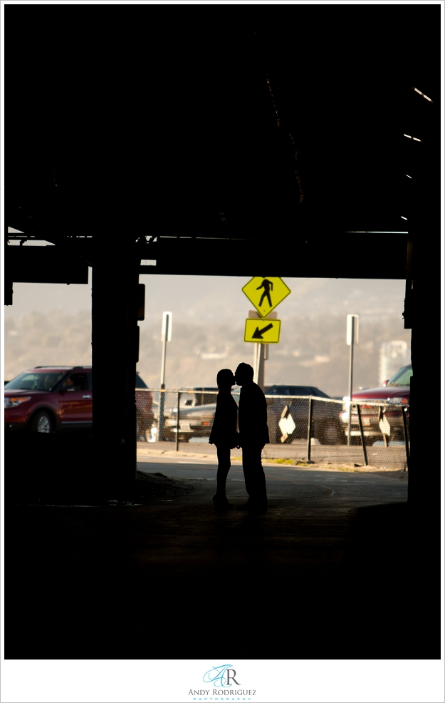 santa-monica-pier-engagement-photos_0009.jpg