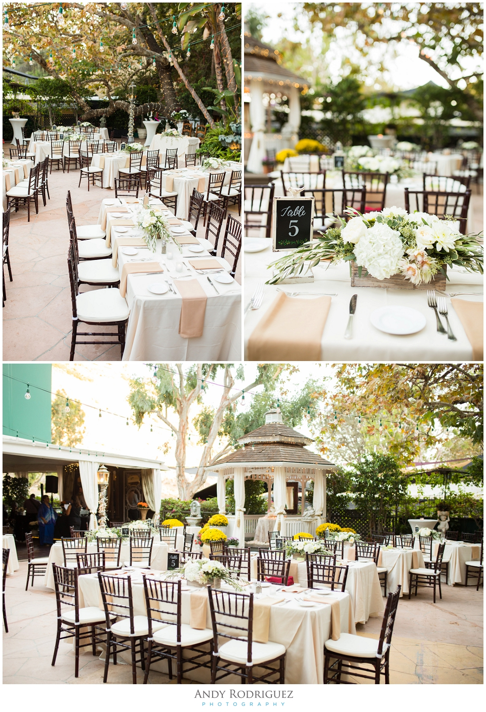 Tivoli Terrace Wedding Reception Details