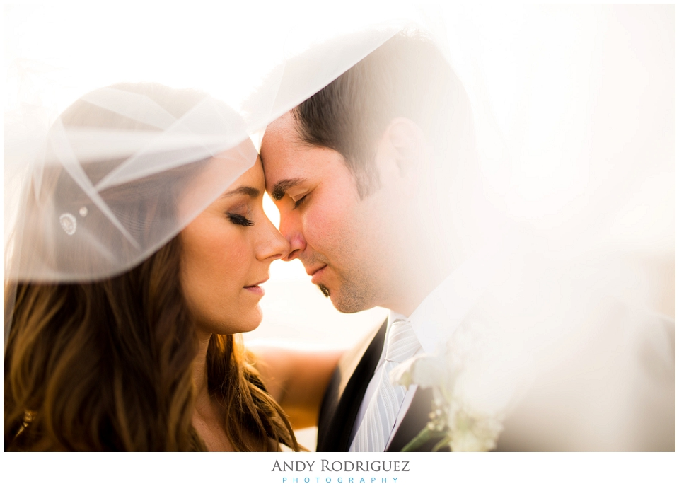 Wedding Portrait in Huntington Beach