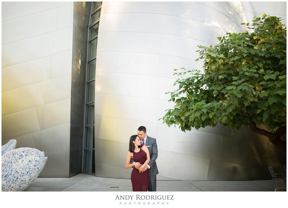 Bride and Groom Engagement Portrait