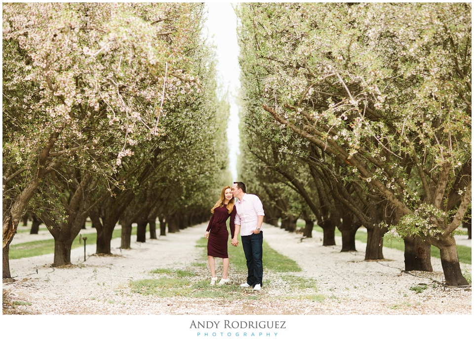 Bakersfield Almond Orchard Photography