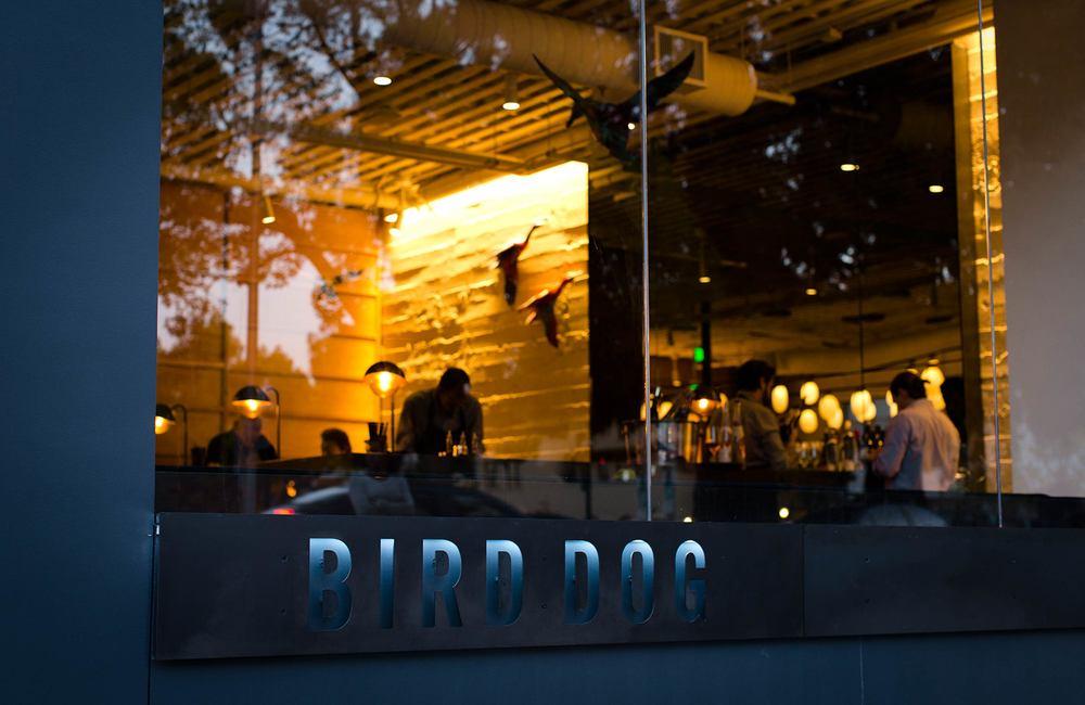 Bird-Dog-2.jpg