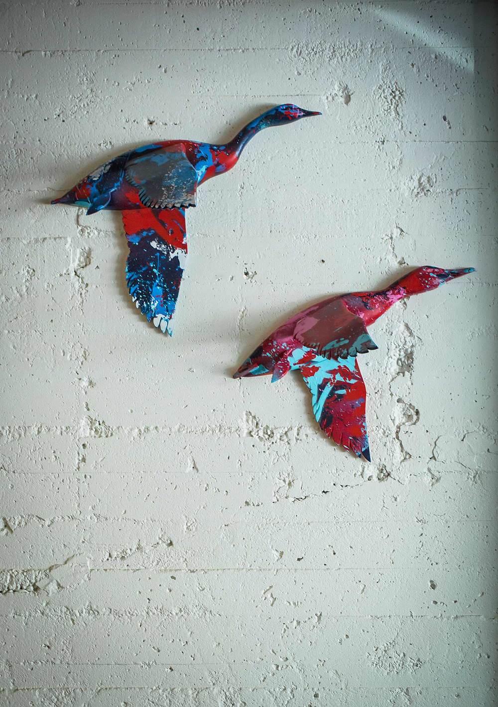 Bird-Dog-9.jpg