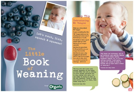 Ten Weaning Recipes LBoW collage Collage.jpg
