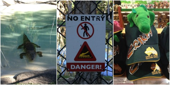 Crocs and croc souvenirs at Australia Zoo. Crikey!