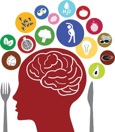 The Self Starving Brain >> Neuro Nutrition Ptsd Association Of Canada