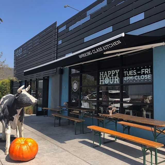 Happy #ThirstyThursday! Betsy the Cow is ready for #Halloween. Come say hi and enjoy Happy Hour from 4PM-7PM
