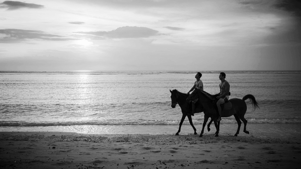 horseback riding mazatlan