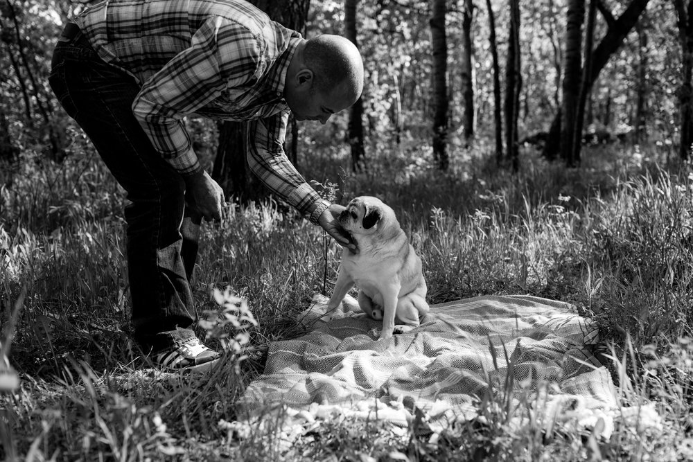 man with dying dog in park