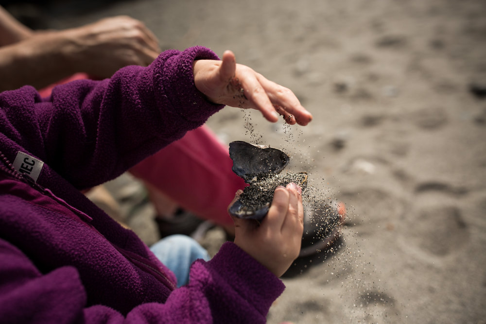 child playing with sand and a seashell