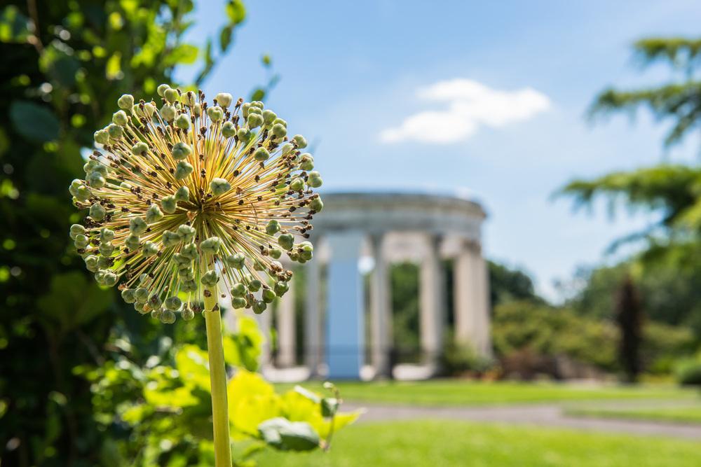 Untermyer Gardens-20.jpg