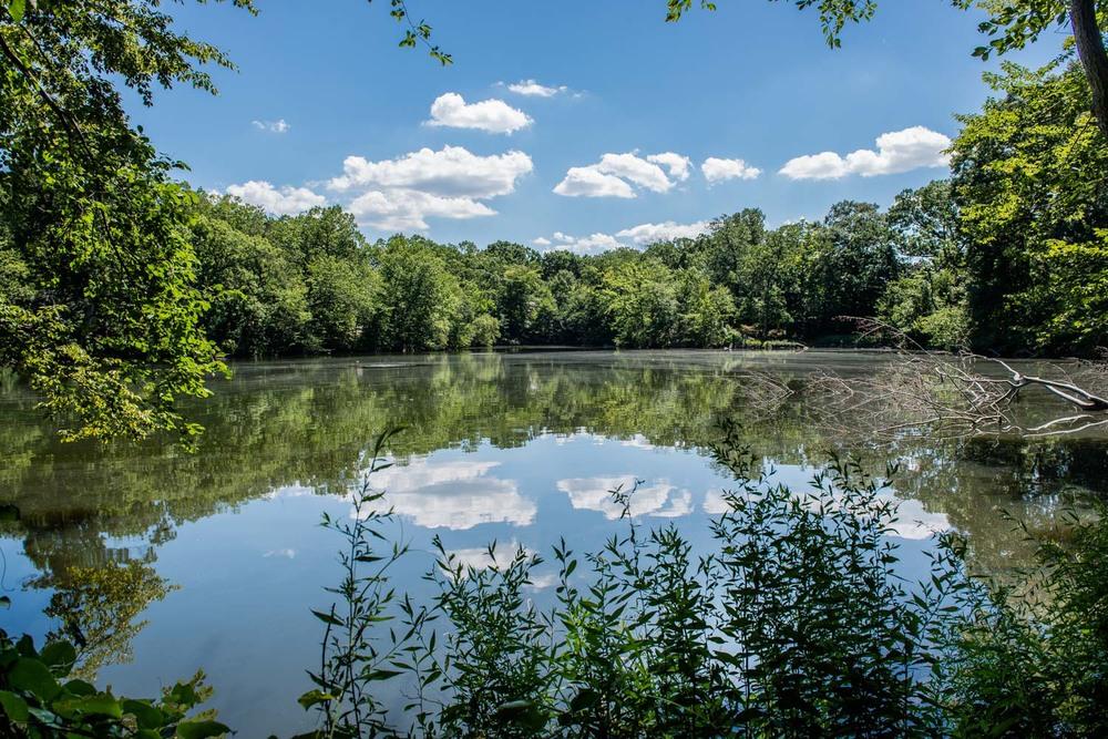 Glenwood Lake New Rochelle