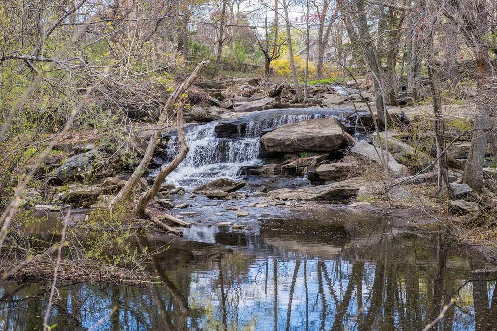 Sheldrake River-Falls Road, Larchmont