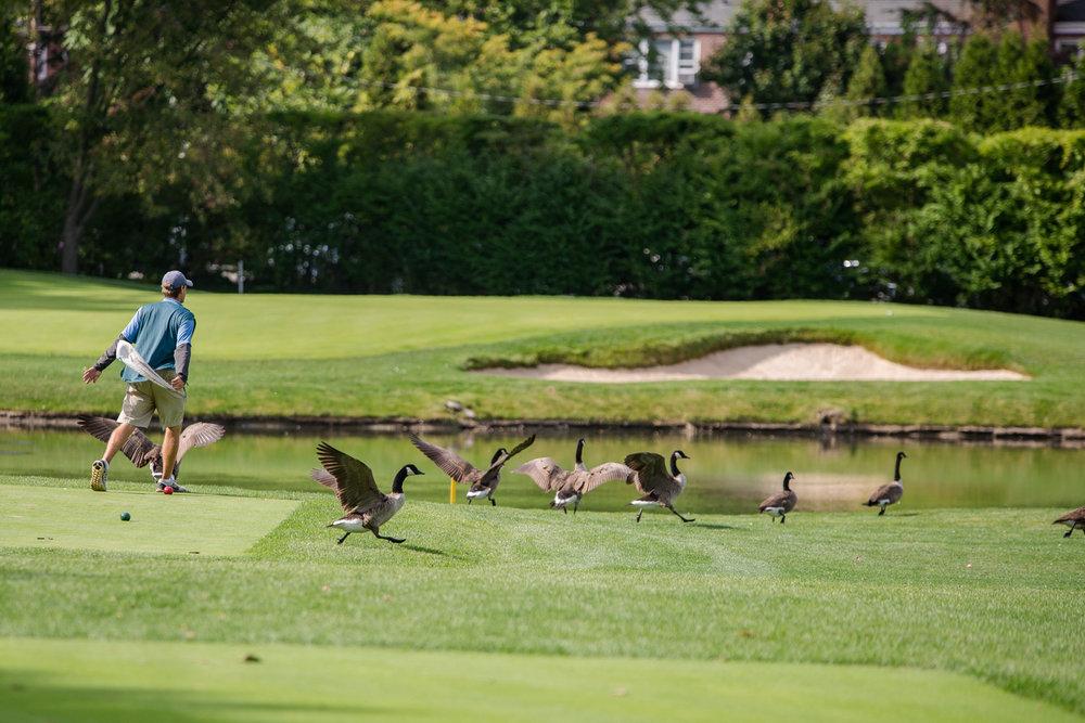 OLPH Golf 2015-224.jpg