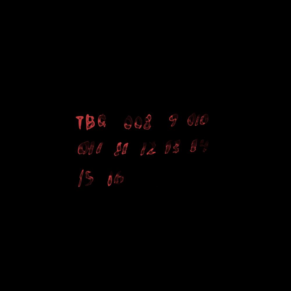 TBQ369