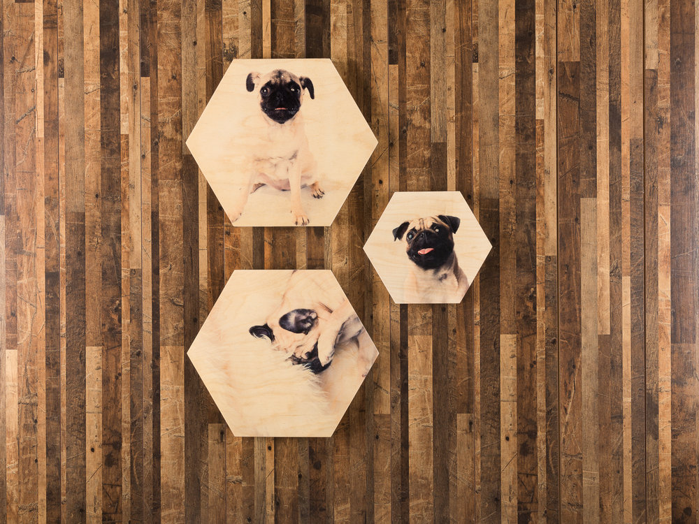 "Pictured here: Hexagon wooden print triptych.  (2) 12"" hexagon wooden prints and (1) 8"" hexagon wooden print."