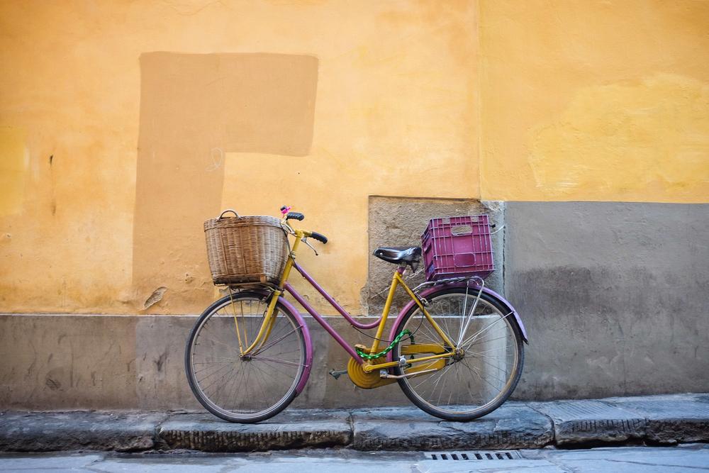 palermo bicicletti di firenze jan15-15.jpg