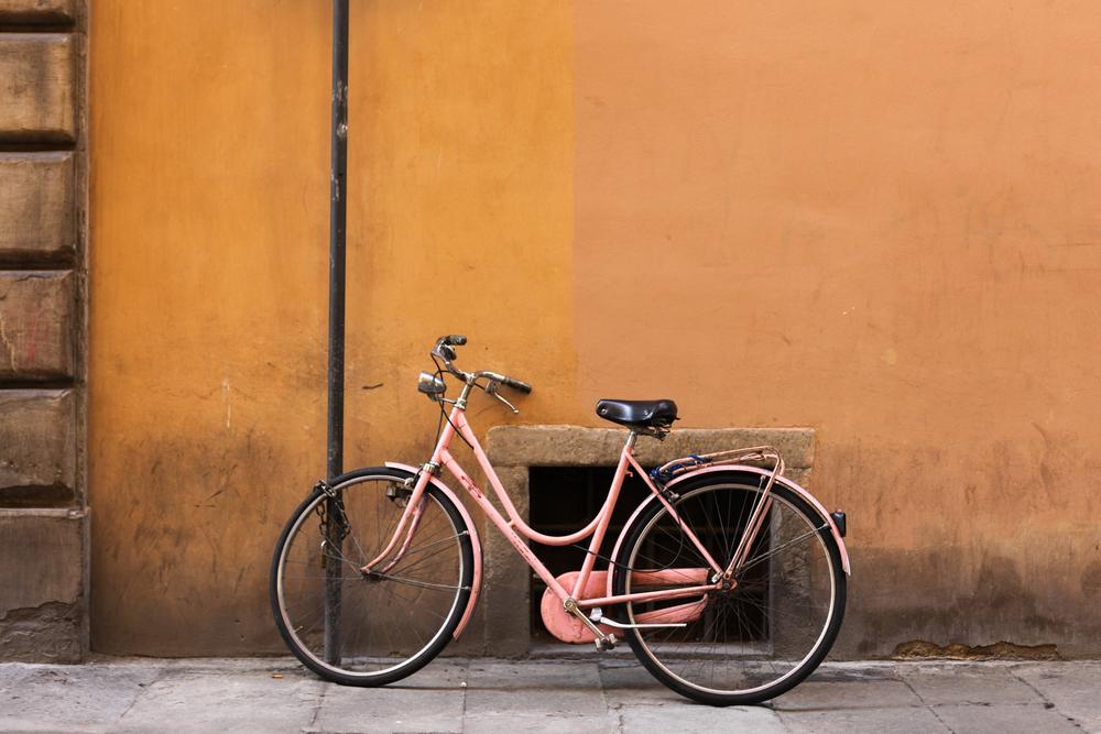 palermo bicicletti di firenze jan15-25.jpg