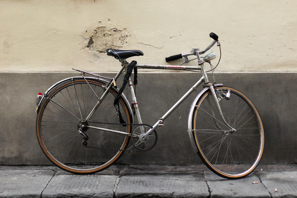 palermo bicicletti di firenze jan15-28.jpg