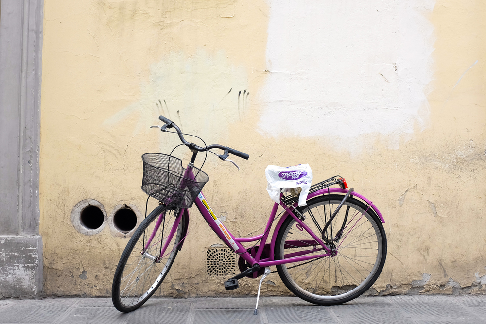 bicicletti di firenze portfolio-10.jpg