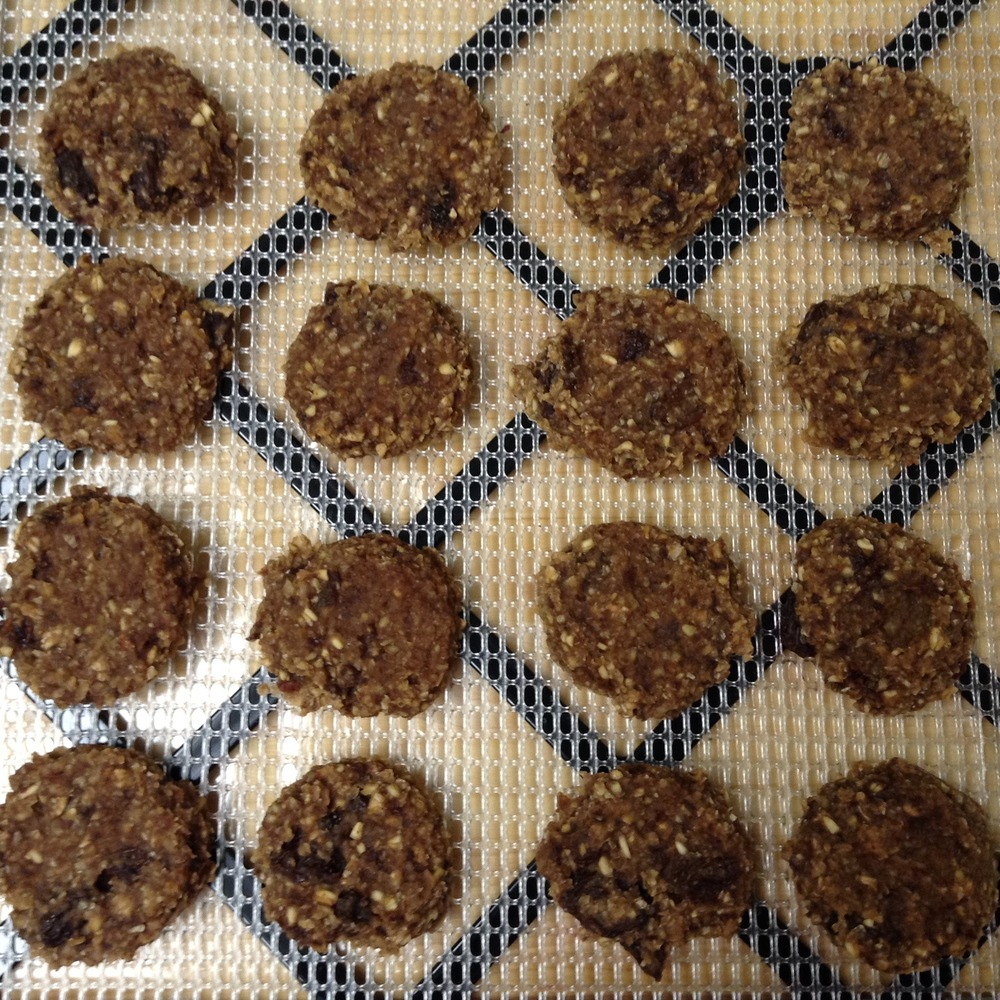 raw, soaked and dehydrated oatmeal raisin cookies