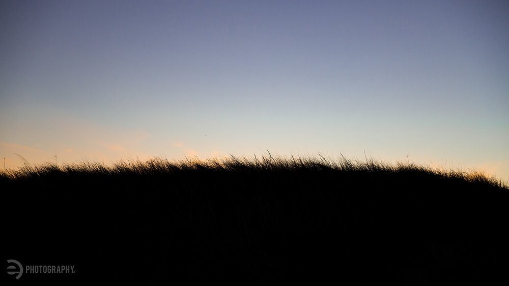 The sunset provided quite the color show, even through the prairie grass.