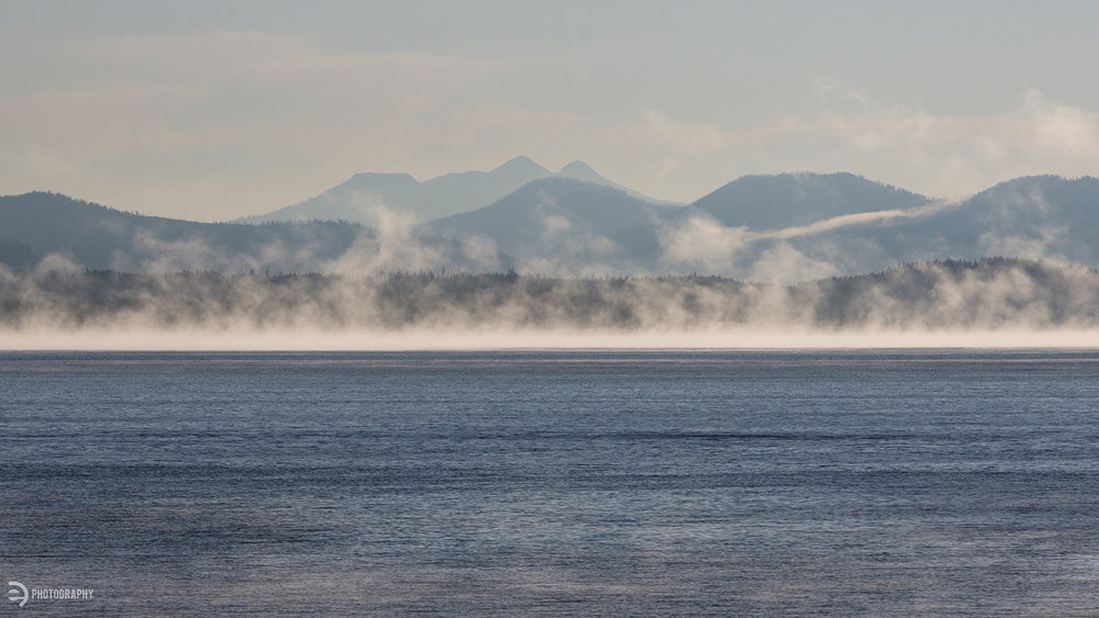 The extreme cold from the night created some magical mist on Yellowstone Lake in the early morning.