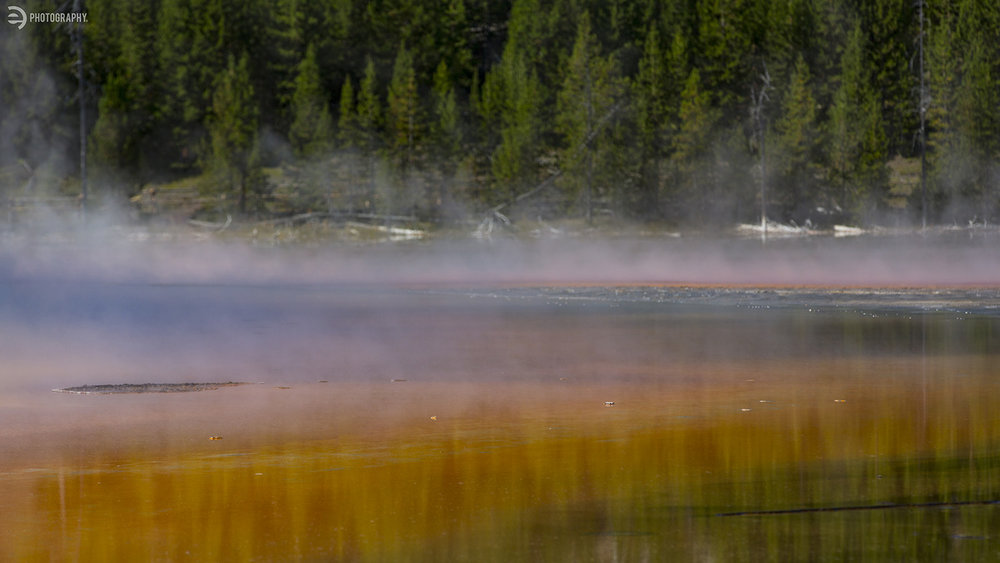 Steam rolls off the Grand Prismatic Spring. Because of the cold - the steam made the spring almost impossible to see - including it's rainbow of colors.
