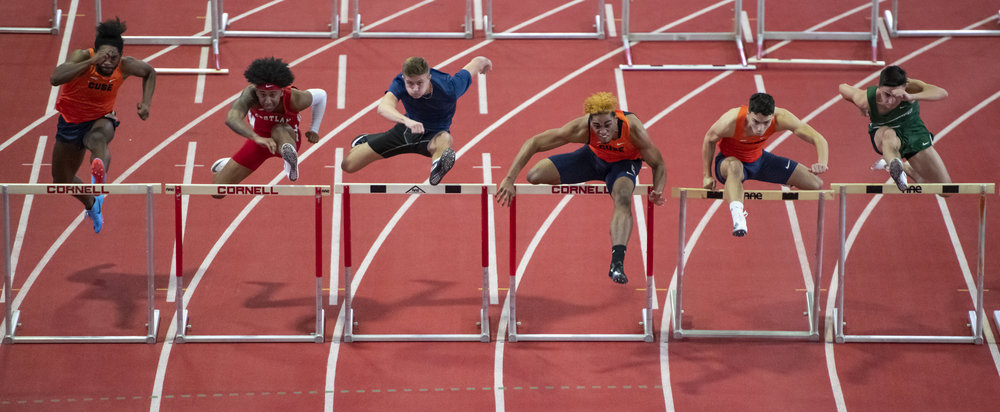 The high perch was great for hurdles with a nice clean background.