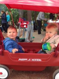 Henry and Ben Cgy AO picnic2015.jpg